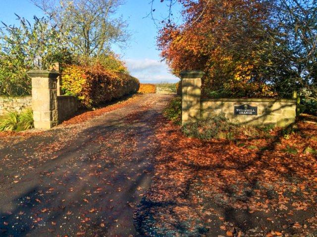 Driveway to Throphill Grange